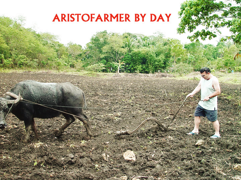 The Aristofarmers